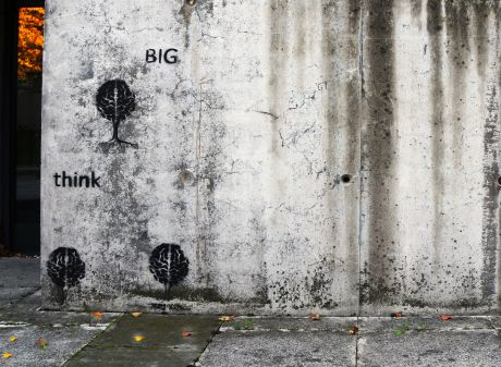Graffiti on the house wall of the Medical Library: think big